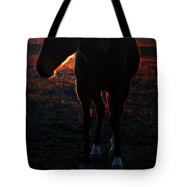 Tote Bag featuring the photograph Sunset Splendor by Robert McCubbin