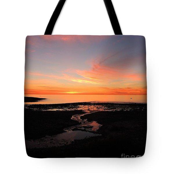 Field River, Hallett Cove Tote Bag by Linda Hollis