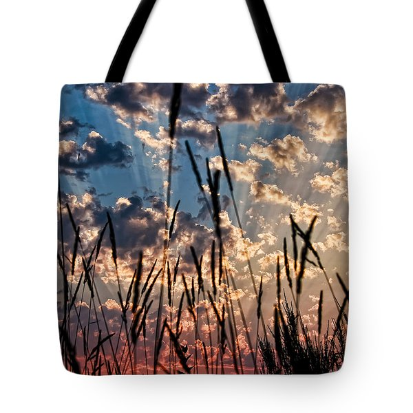 Tote Bag featuring the photograph Sunset Through The Grasses by Don Schwartz