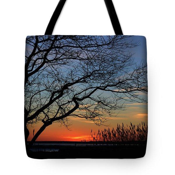 Sunset Tree In Ocean City Md Tote Bag
