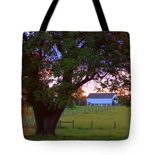 Sunset With Tree Tote Bag by Joseph Skompski