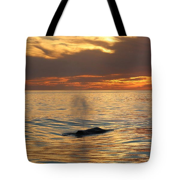 Sunset Wonder Tote Bag