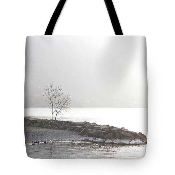 Sunshine Tote Bag by Colleen Williams