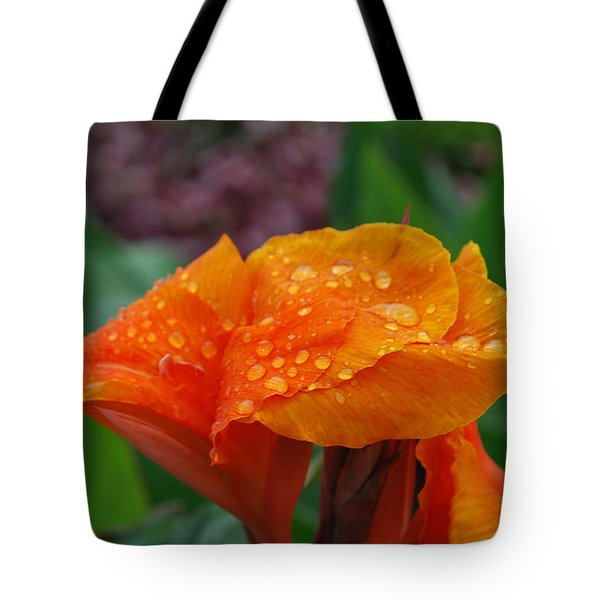 Tote Bag featuring the photograph Sunshine From Within by Miguel Winterpacht