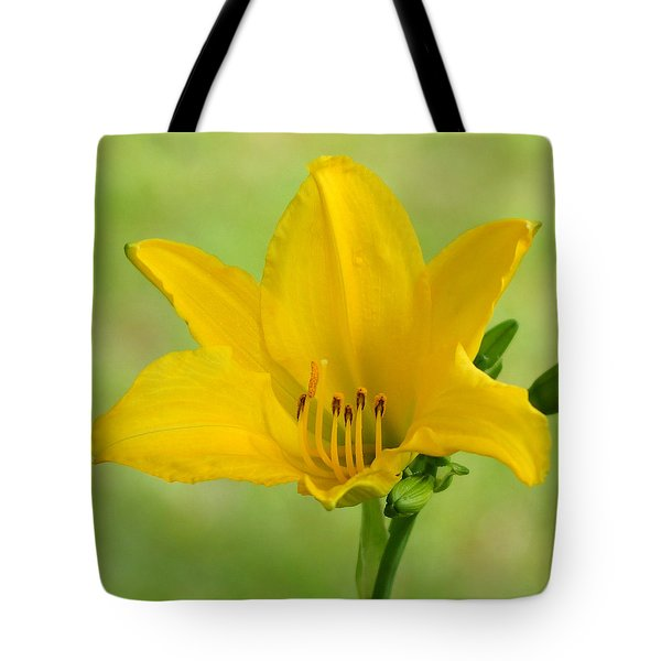 Sunshine In A Flower Tote Bag by Kim Pate