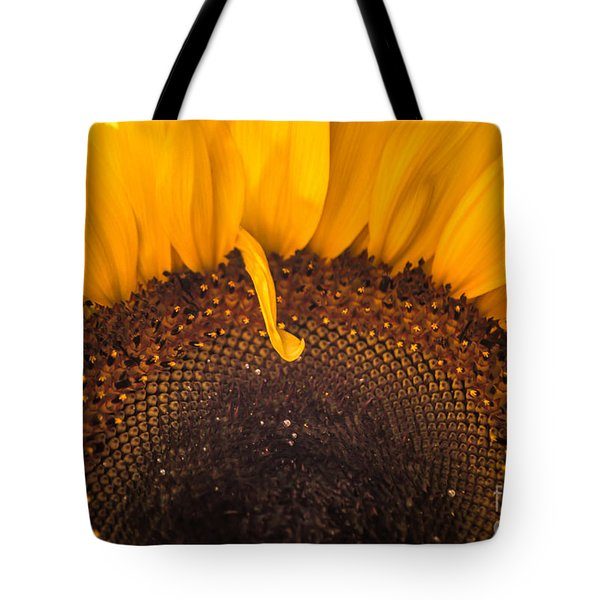 Tote Bag featuring the photograph Sunshine by Jan Bickerton