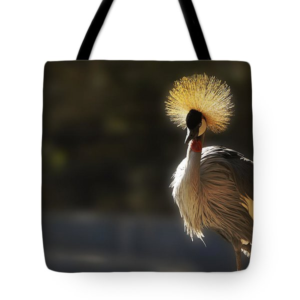 Sunshine On My Shoulders Tote Bag by Music of the Heart