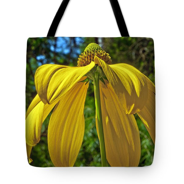 Tote Bag featuring the photograph Sunshine On My Shoulders by Tikvah's Hope