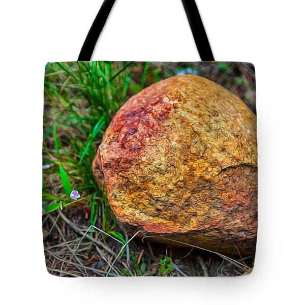 Sunshine Rock Tote Bag by Omaste Witkowski