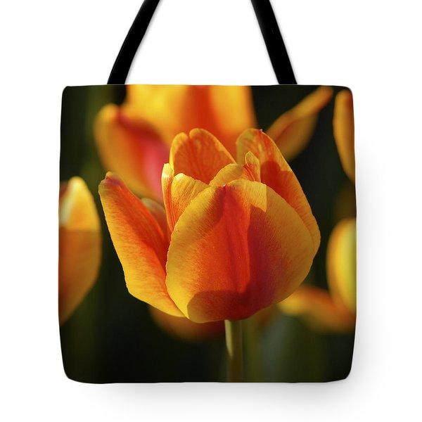 Sunshine Tulips Tote Bag
