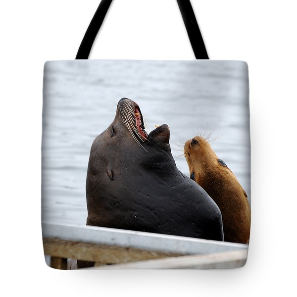 Supersized Sea Lion And Friend Tote Bag