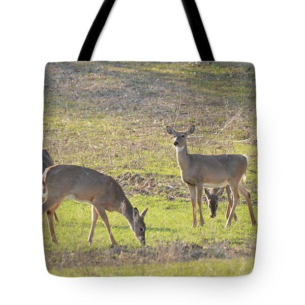 Supper Gathering Tote Bag by Dacia Doroff