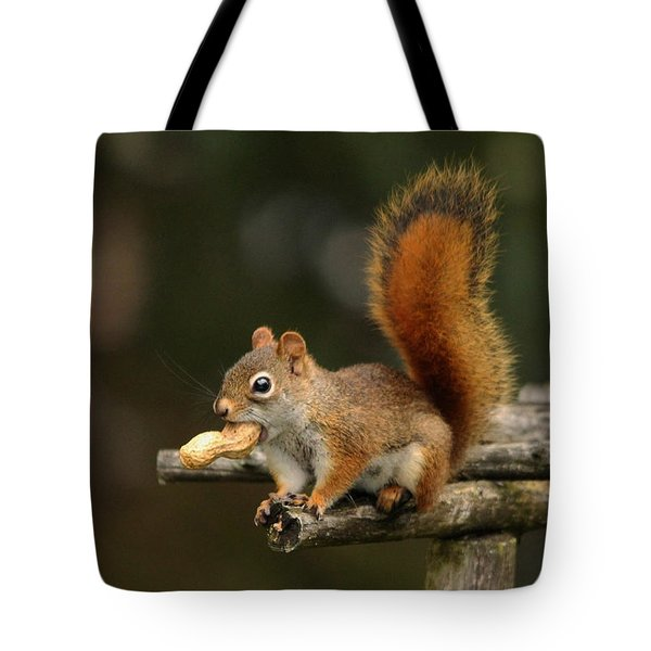 Surprised Red Squirrel With Nut Portrait Tote Bag by Debbie Oppermann
