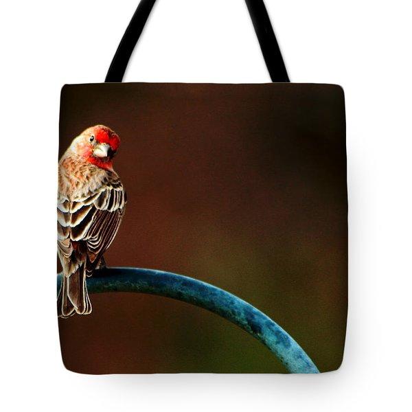 Surreal Purple Finch Tote Bag