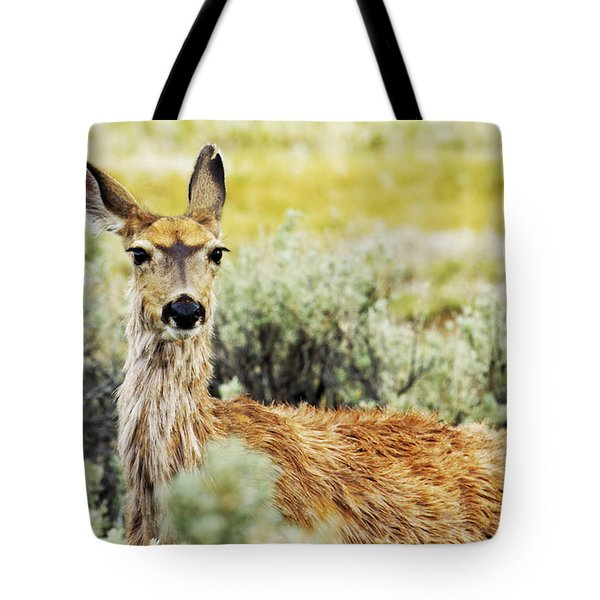 Surround Sound Tote Bag