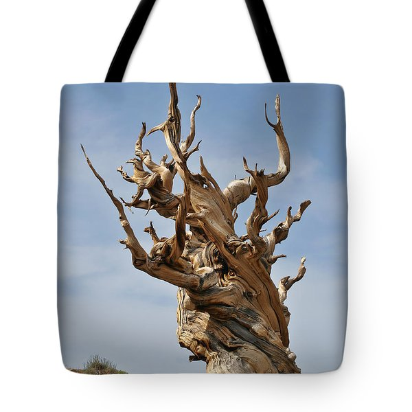 Survival Expert Bristlecone Pine Tote Bag by Christine Till