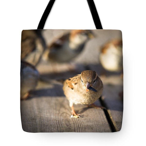 Survival Of The Fittest Tote Bag by Alexander Senin