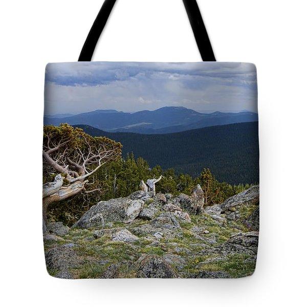 Survivor Tote Bag by Gary Holmes