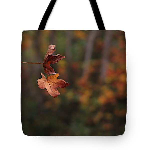 Tote Bag featuring the photograph Suspended by Katie Wing Vigil