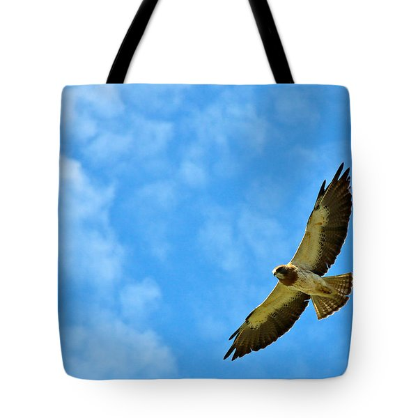 Swainson's Hawk Snake River Birds Of Prey Natural Conservation Area Tote Bag