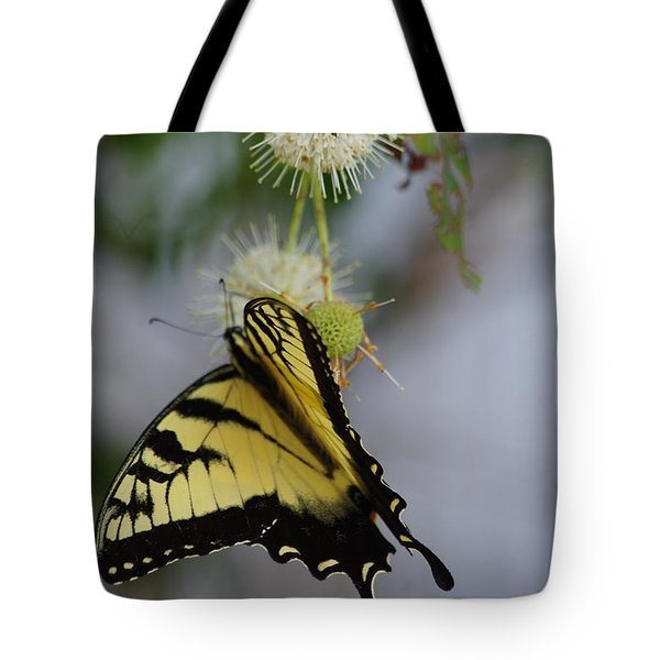 Swallowtail Butterfly 1 Tote Bag