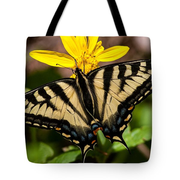 Swallowtail Butterfly Tote Bag by Jack Bell