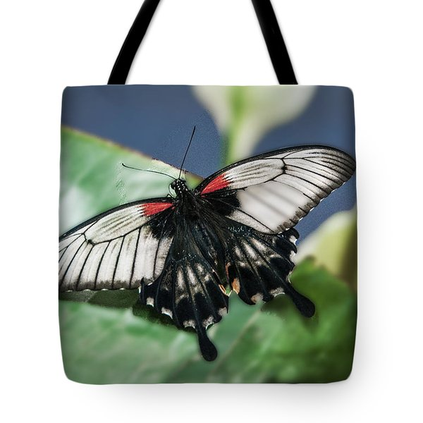 Tote Bag featuring the digital art Swallowtail Butterfly by Mae Wertz