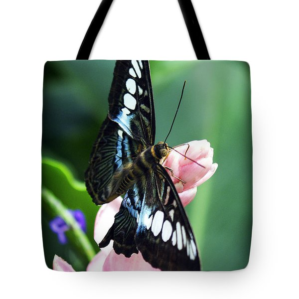 Swallowtail Butterfly Tote Bag by Marilyn Hunt