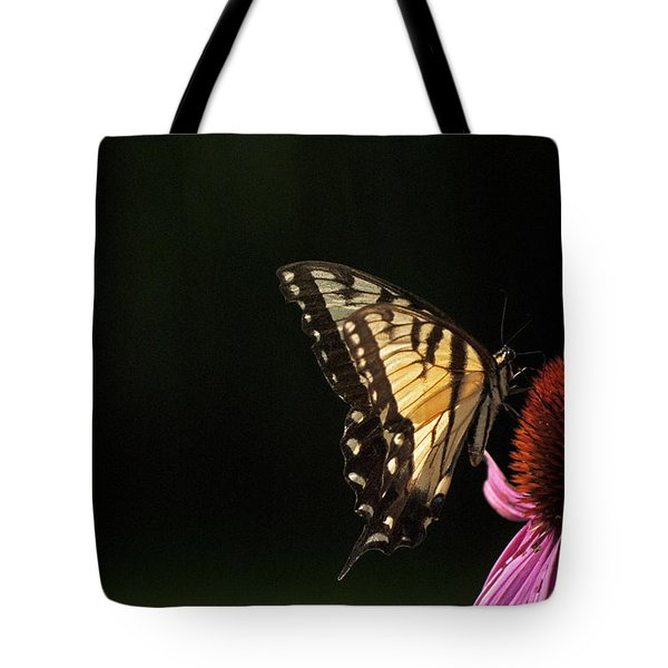 Tote Bag featuring the photograph Swallowtail In The Light by Elsa Marie Santoro