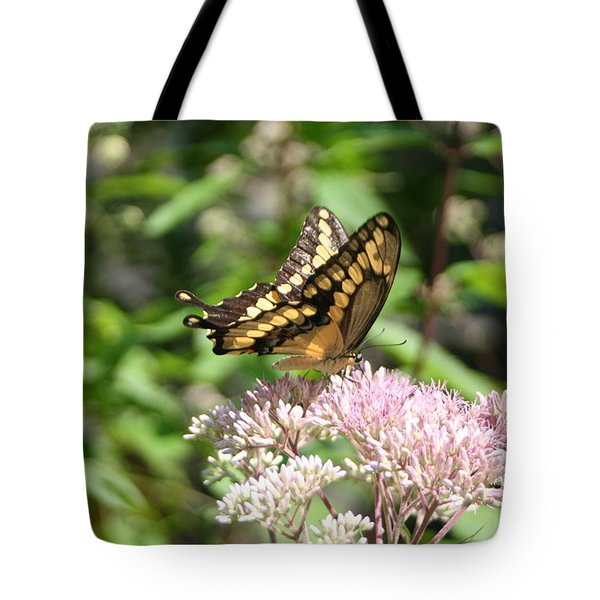 Tote Bag featuring the photograph Swallowtail by Karen Silvestri