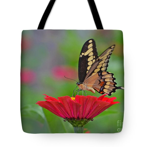 Swallowtail On A Zinnia Tote Bag