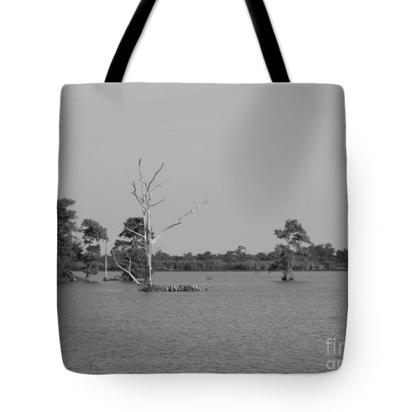 Tote Bag featuring the photograph Swamp Cypress Trees Black And White by Joseph Baril