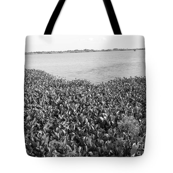 Tote Bag featuring the photograph Swamp Hyacinths Water Lillies Black And White by Joseph Baril