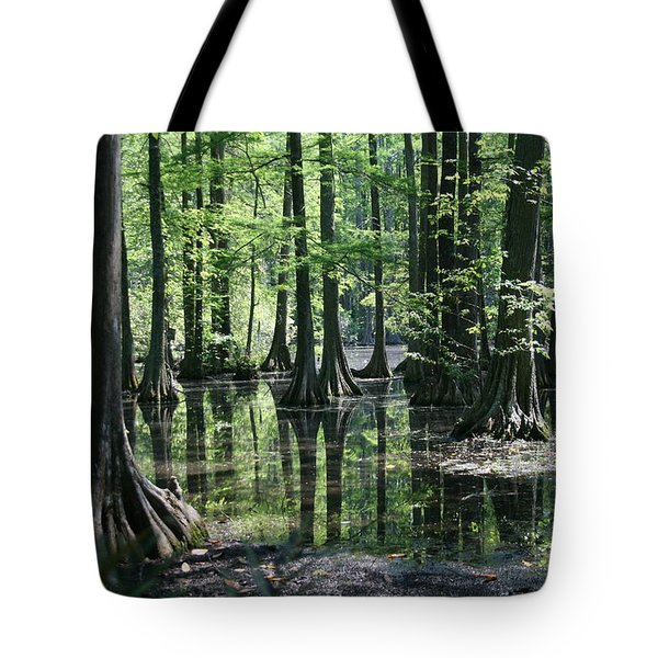 Swamp Land Tote Bag by Cathy Harper