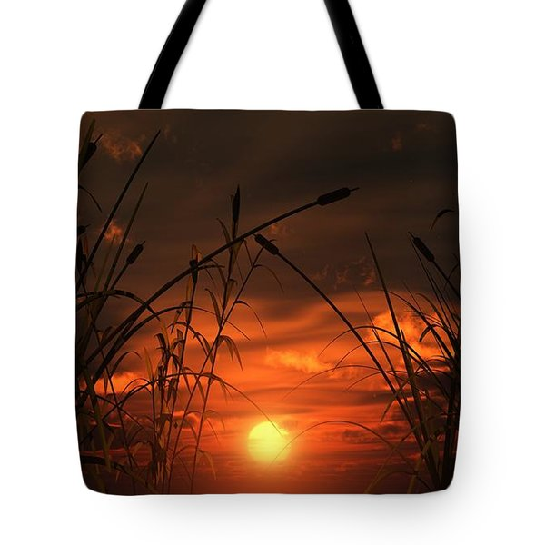 Swamp Sunset  Tote Bag by Tim Fillingim