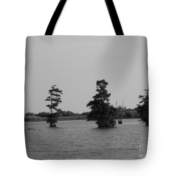 Tote Bag featuring the photograph Swamp Tall Cypress Trees Black And White by Joseph Baril