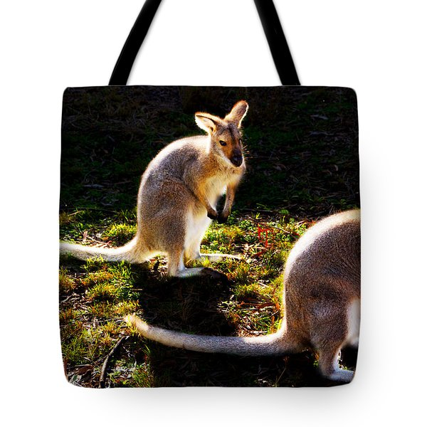 Red-necked Wallabies Tote Bag