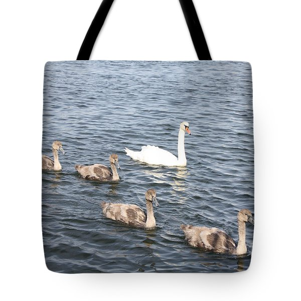 Tote Bag featuring the photograph Swan And His Ducklings by John Telfer