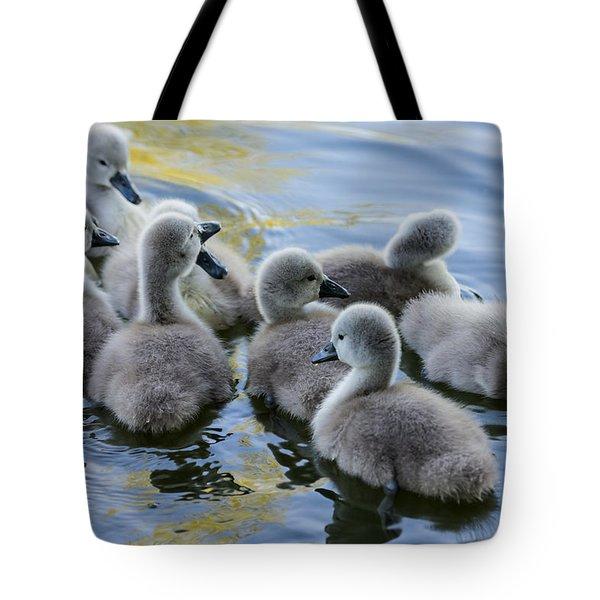 Swan Babies Tote Bag by Michael Mogensen