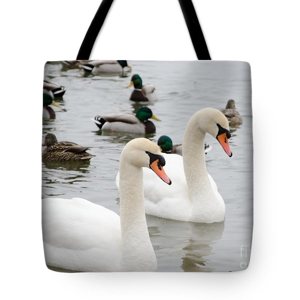 Swan Couple Tote Bag