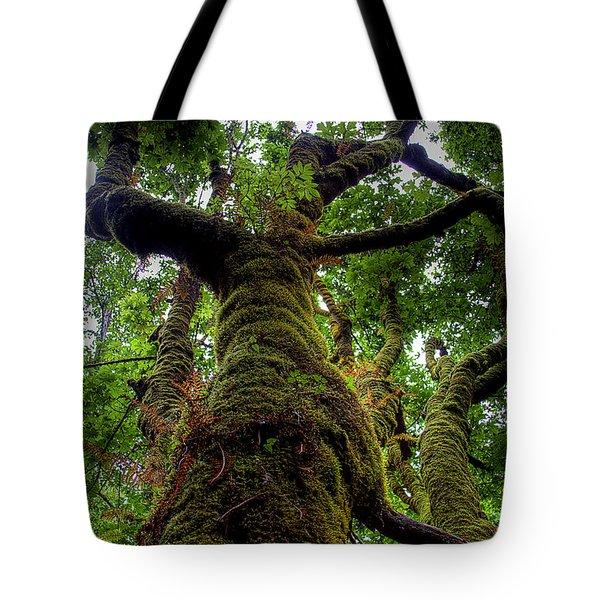 Swan Creek Tree Tote Bag