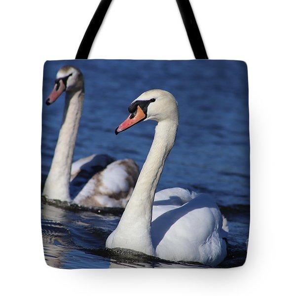 Swan Duo Tote Bag