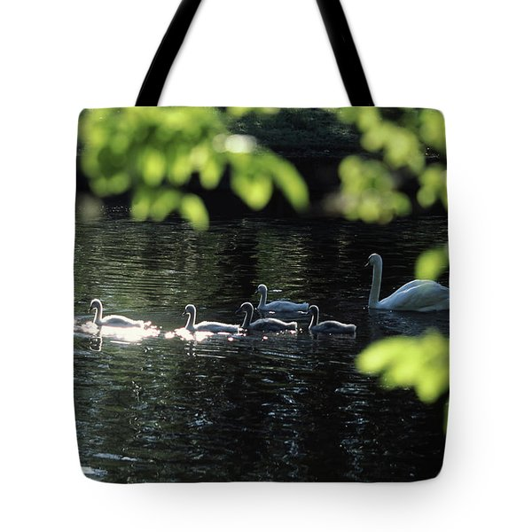Swan Family In A Lake, Middleton Place Tote Bag