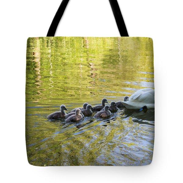 Swan Family Tote Bag by Michael Mogensen