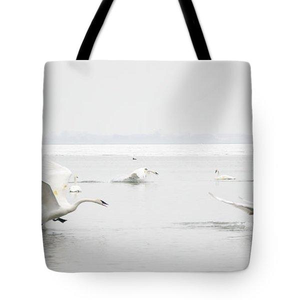 Swan Fight Tote Bag