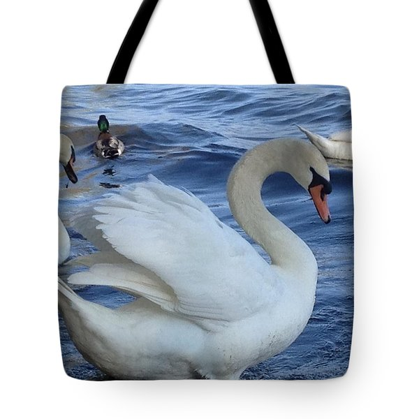 Swan Grace Tote Bag by Pema Hou