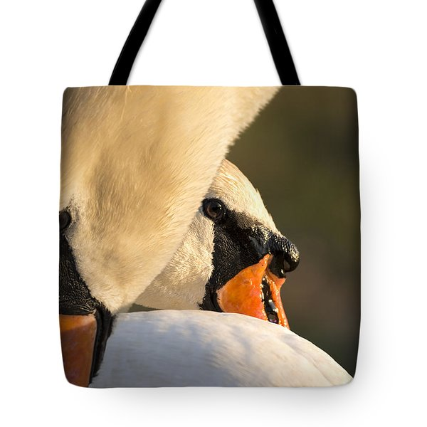 Swan Heads Tote Bag