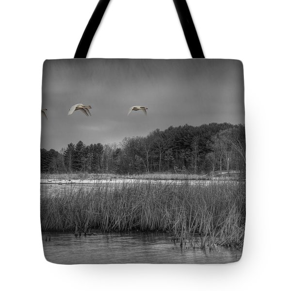 Swan Migration Tote Bag