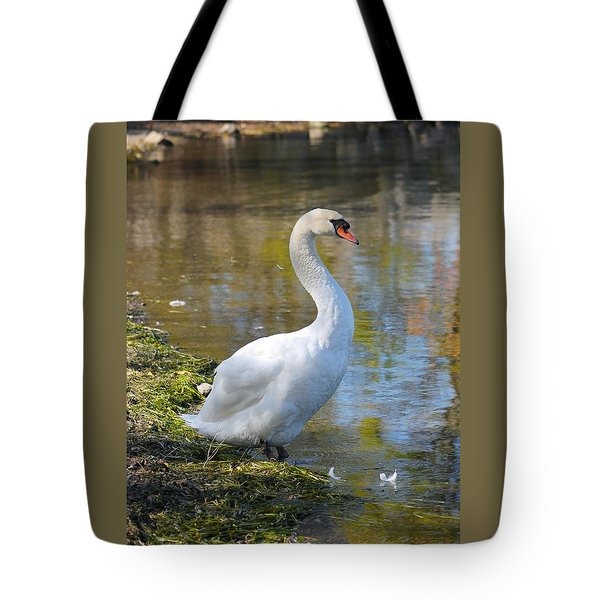 Swan Portrait Tote Bag
