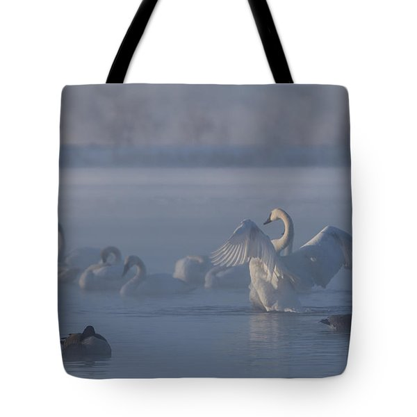 Tote Bag featuring the photograph Swan Showing Off by Patti Deters